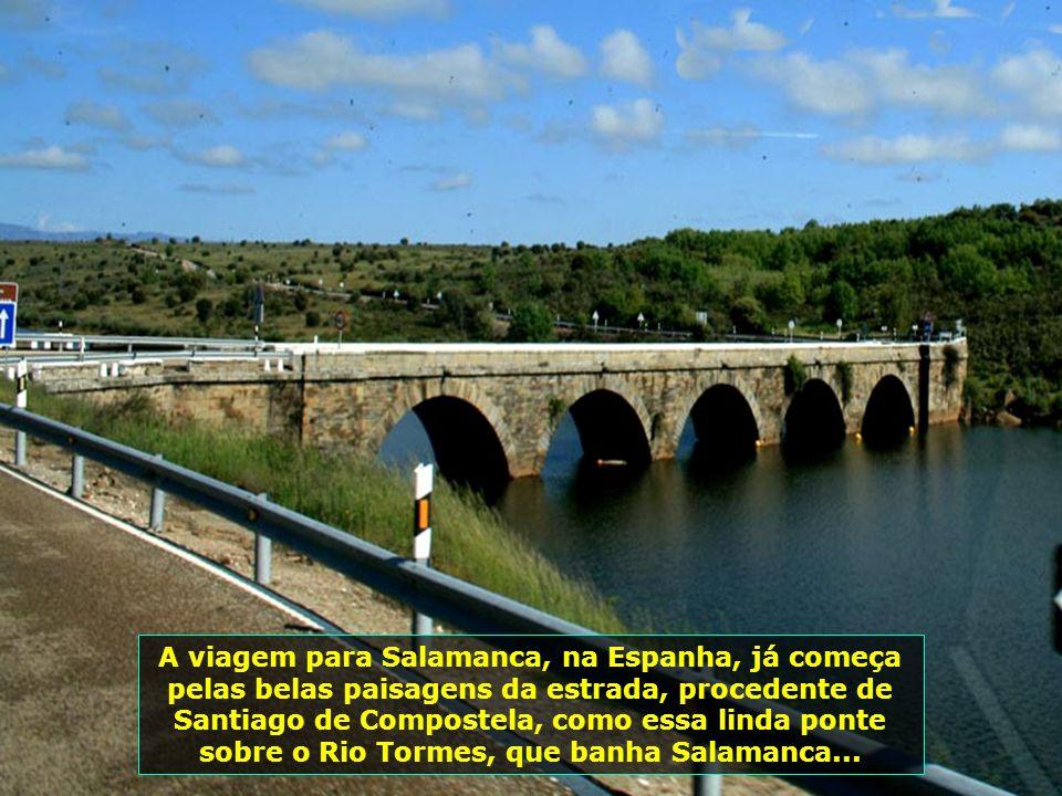 IMG_1678 - ESPANHA - ESTRADA SALAMANCA PARA SANTIAGO DE COMPOSTELA-800
