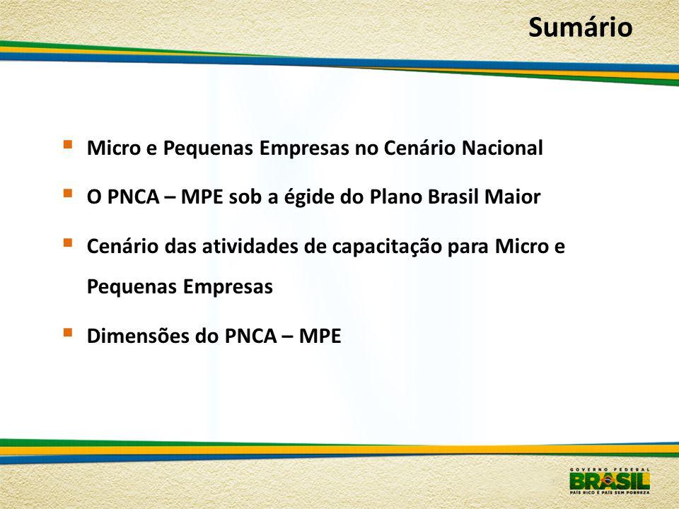 Sumário Micro e Pequenas Empresas no Cenário Nacional
