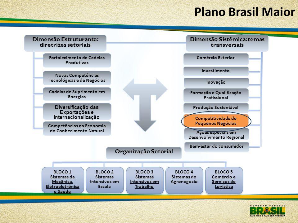 Plano Brasil Maior Dimensão Estruturante: diretrizes setoriais
