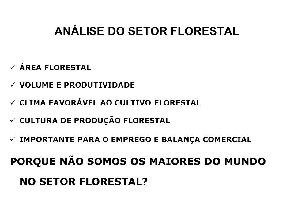 ANÁLISE DO SETOR FLORESTAL