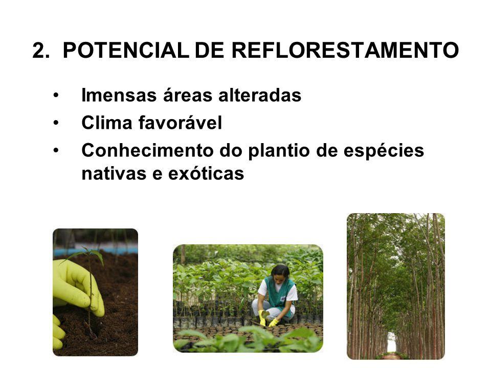 2. POTENCIAL DE REFLORESTAMENTO