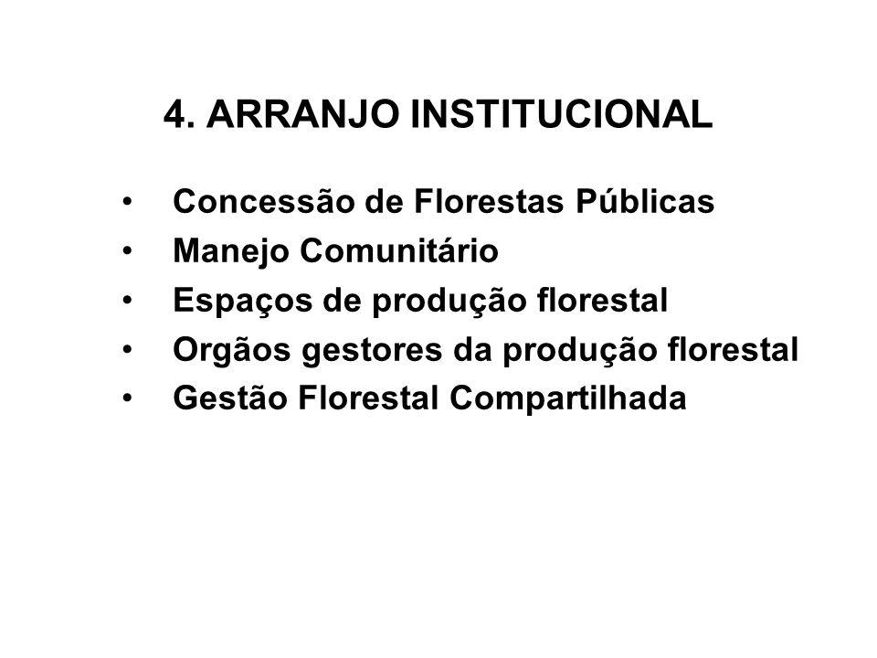 4. ARRANJO INSTITUCIONAL