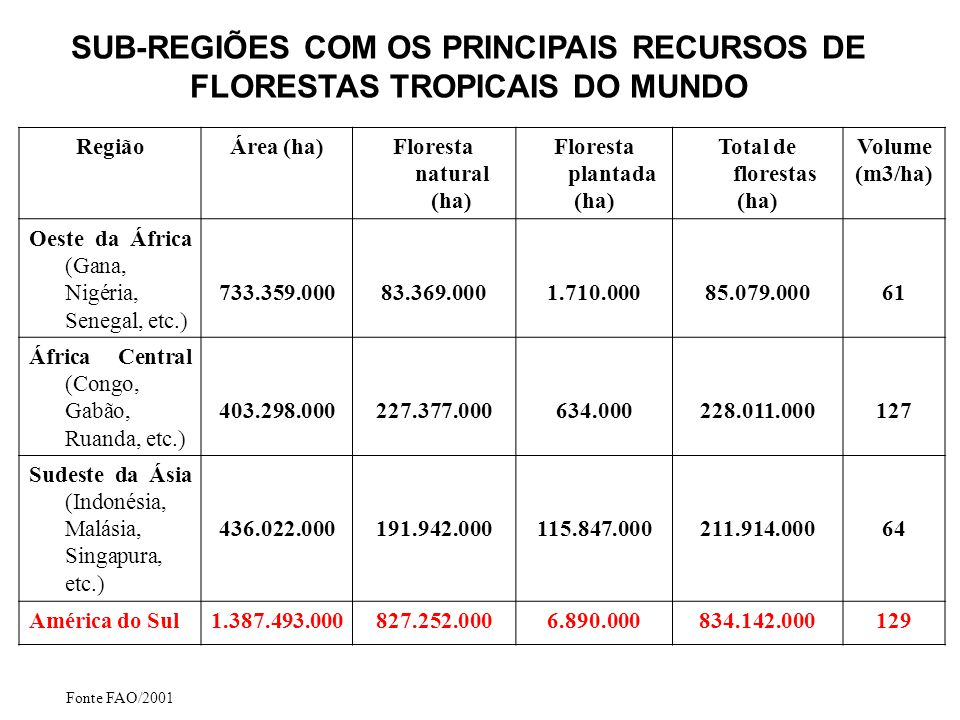 SUB-REGIÕES COM OS PRINCIPAIS RECURSOS DE FLORESTAS TROPICAIS DO MUNDO