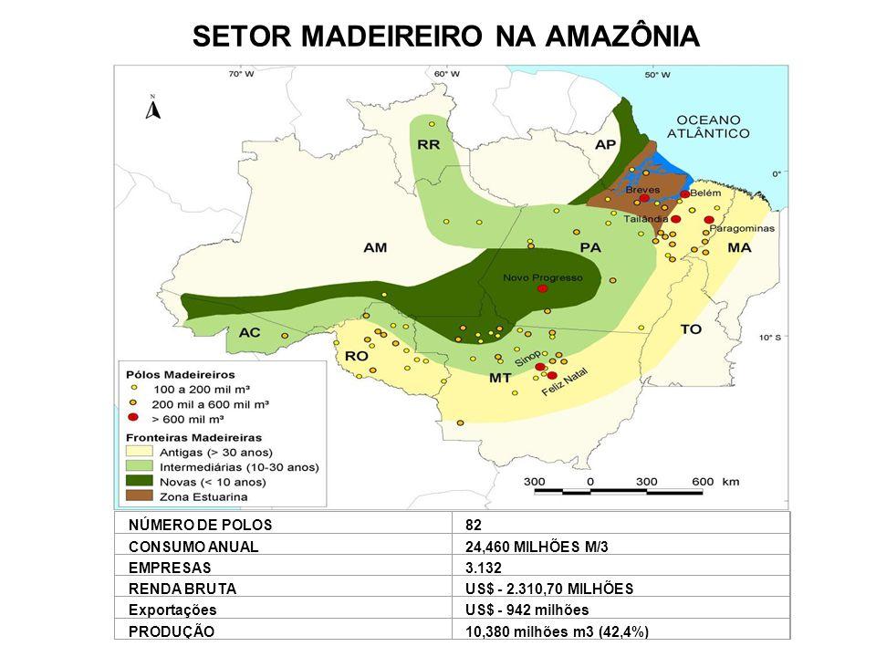 SETOR MADEIREIRO NA AMAZÔNIA