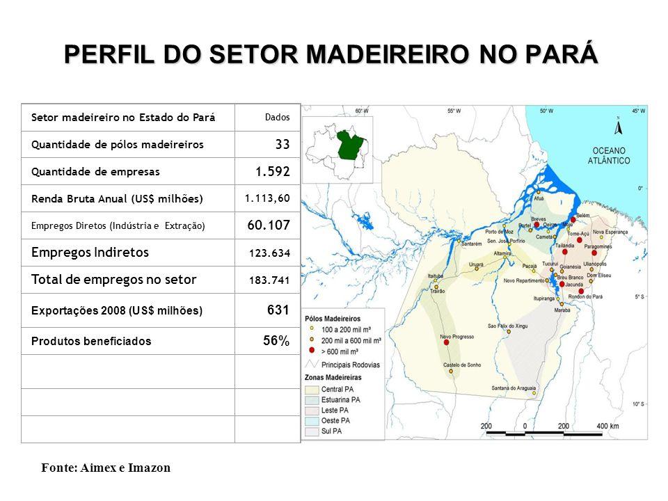 PERFIL DO SETOR MADEIREIRO NO PARÁ