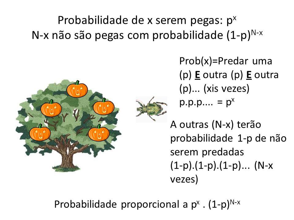 Probabilidade de x serem pegas: px N-x não são pegas com probabilidade (1-p)N-x