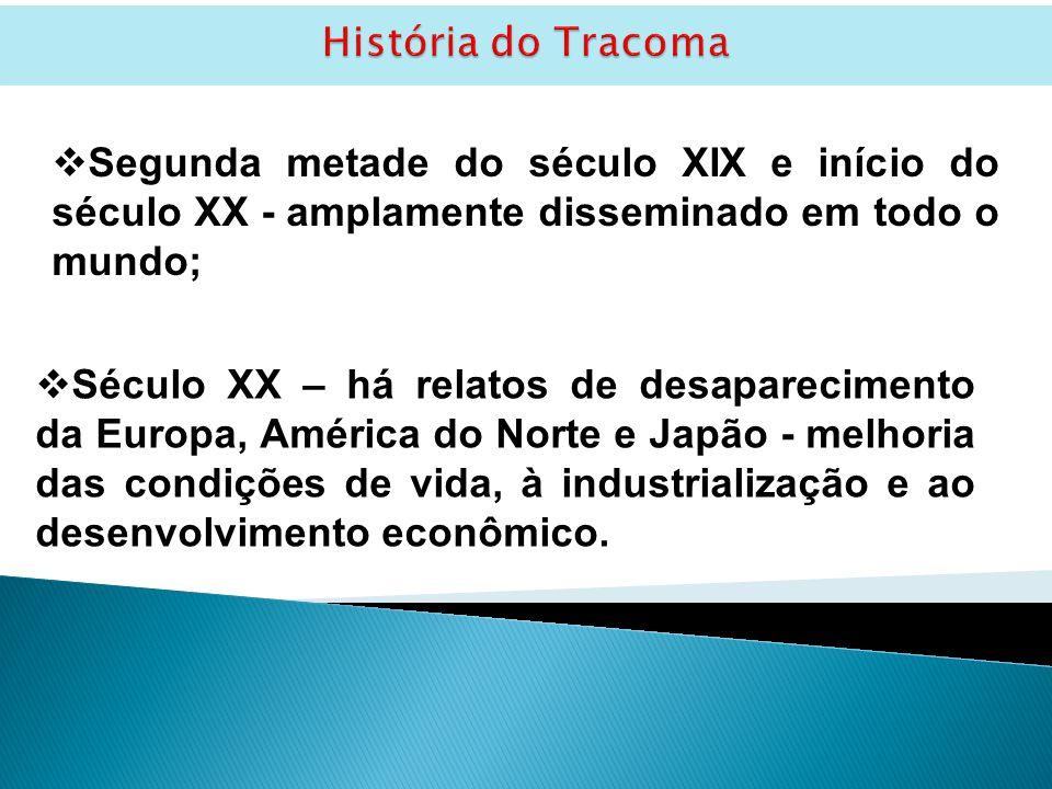 História do Tracoma Segunda metade do século XIX e início do século XX - amplamente disseminado em todo o mundo;