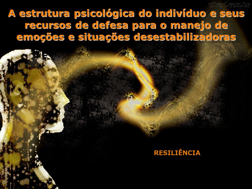A estrutura psicológica do indivíduo e seus recursos de defesa para o manejo de emoções e situações desestabilizadoras