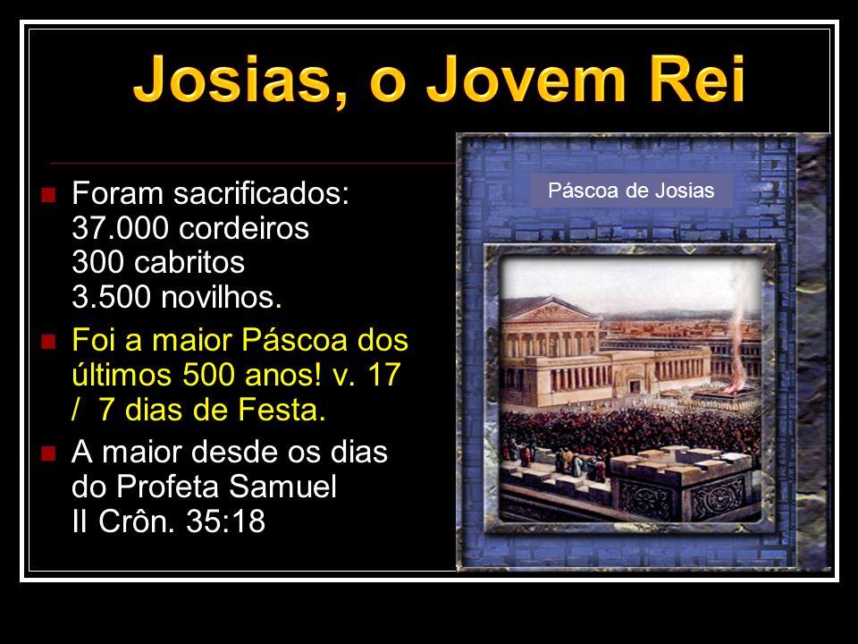 Josias, o Jovem Rei Foram sacrificados: 37.000 cordeiros 300 cabritos 3.500 novilhos.