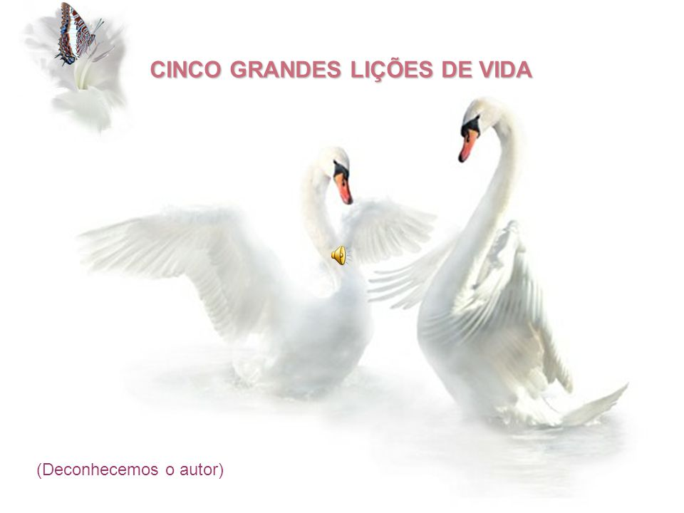 CINCO GRANDES LIÇÕES DE VIDA