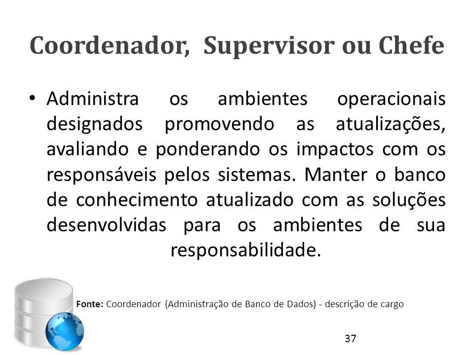 Coordenador, Supervisor ou Chefe