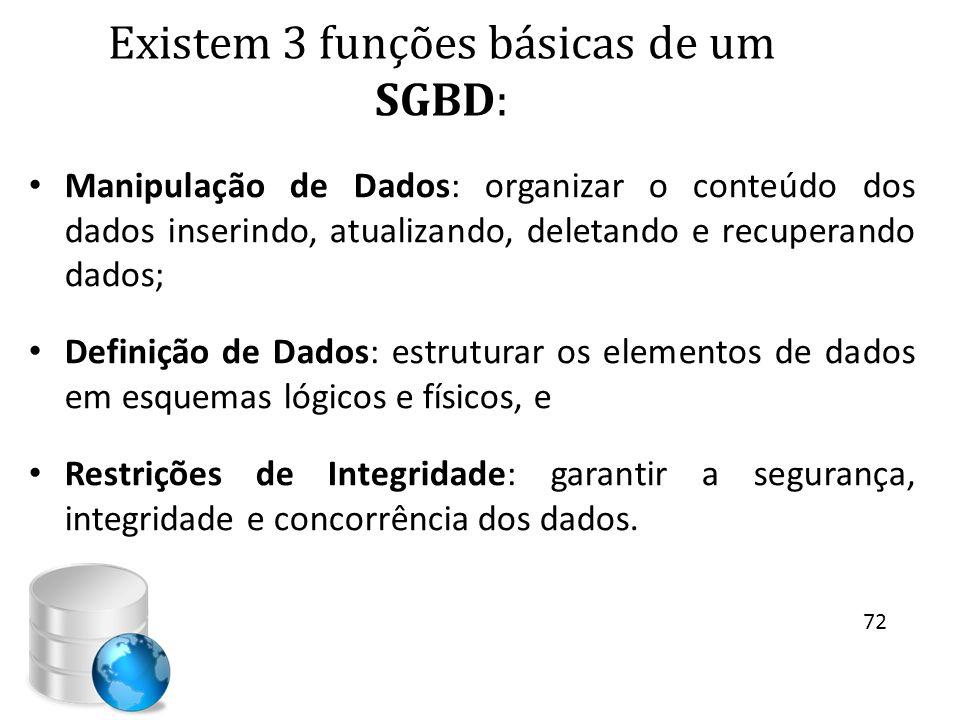 Existem 3 funções básicas de um SGBD: