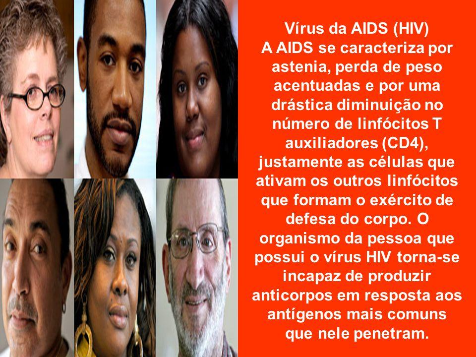 Vírus da AIDS (HIV)