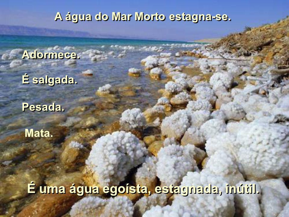 A água do Mar Morto estagna-se. É uma água egoísta, estagnada, inútil.