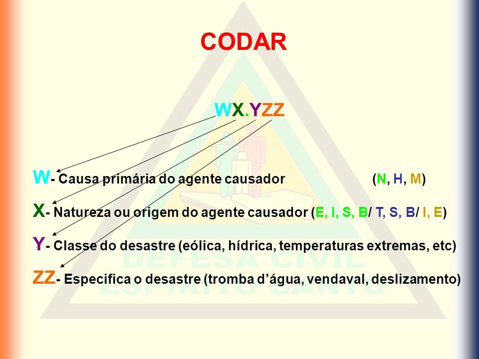 CODAR WX.YZZ W- Causa primária do agente causador (N, H, M)