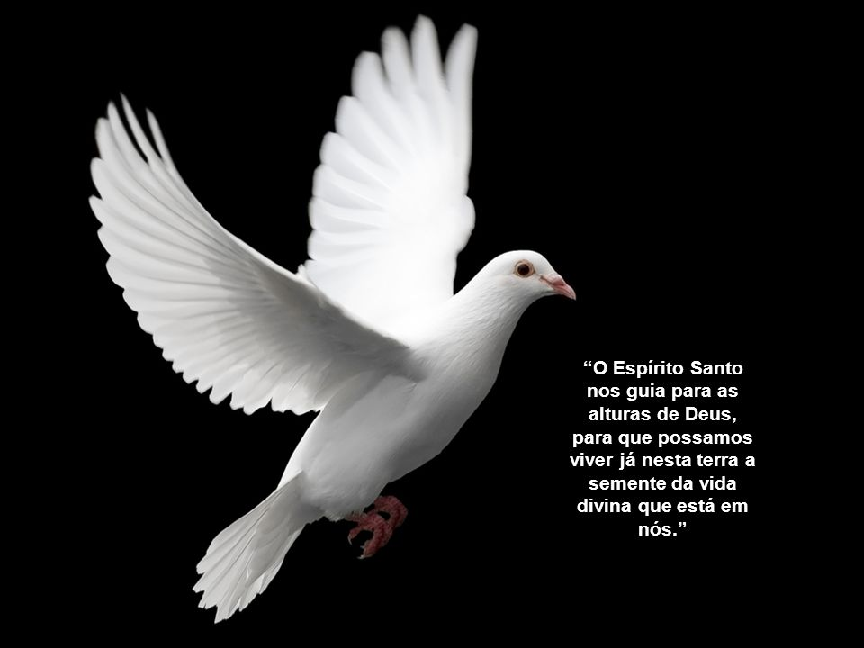 O Espírito Santo nos guia para as alturas de Deus, para que possamos viver já nesta terra a semente da vida divina que está em nós.