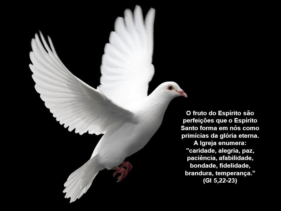 O fruto do Espírito são perfeições que o Espírito Santo forma em nós como primícias da glória eterna.
