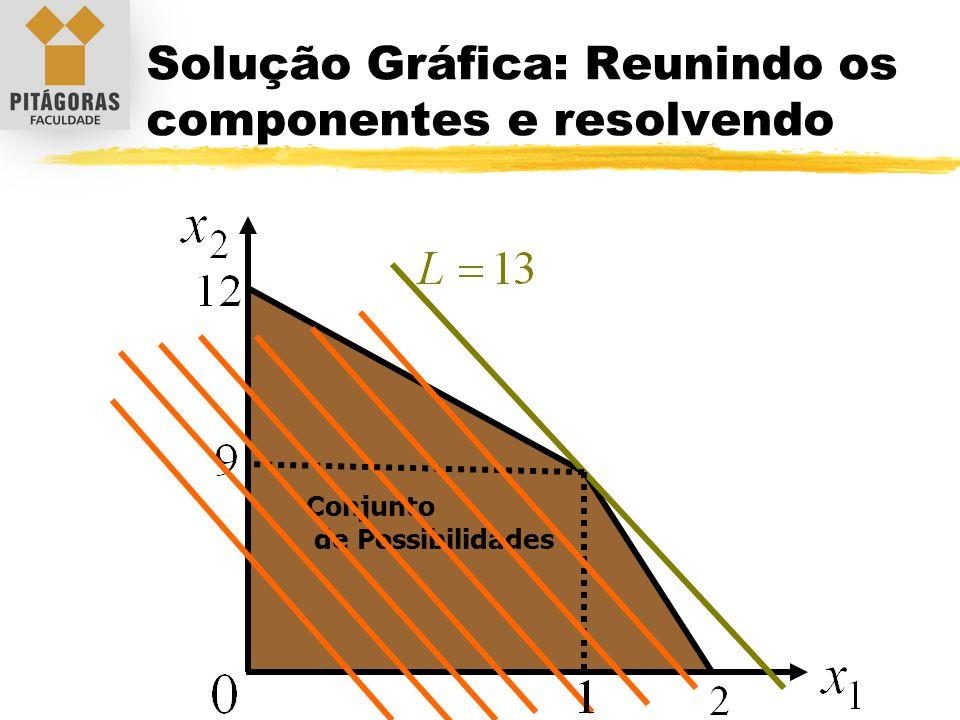 Solução Gráfica: Reunindo os componentes e resolvendo