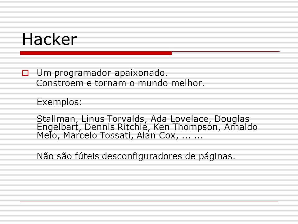 Hacker Um programador apaixonado. Constroem e tornam o mundo melhor.