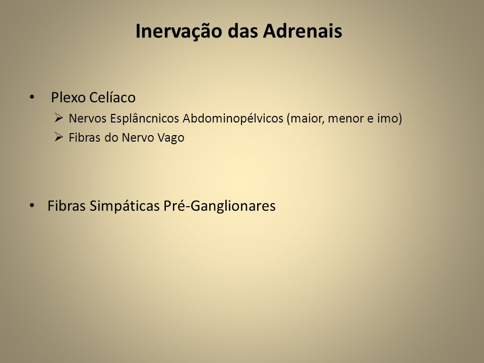 Inervação das Adrenais