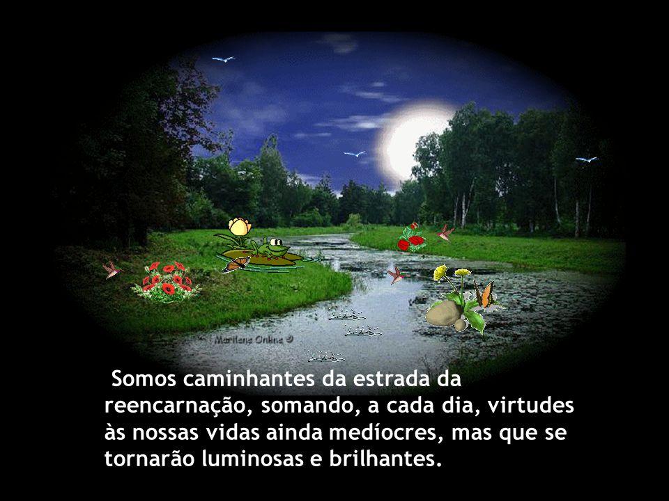 Somos caminhantes da estrada da reencarnação, somando, a cada dia, virtudes às nossas vidas ainda medíocres, mas que se tornarão luminosas e brilhantes.