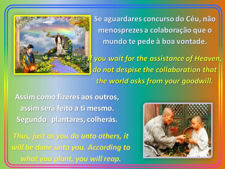 Se aguardares concurso do Céu, não menosprezes a colaboração que o mundo te pede à boa vontade.