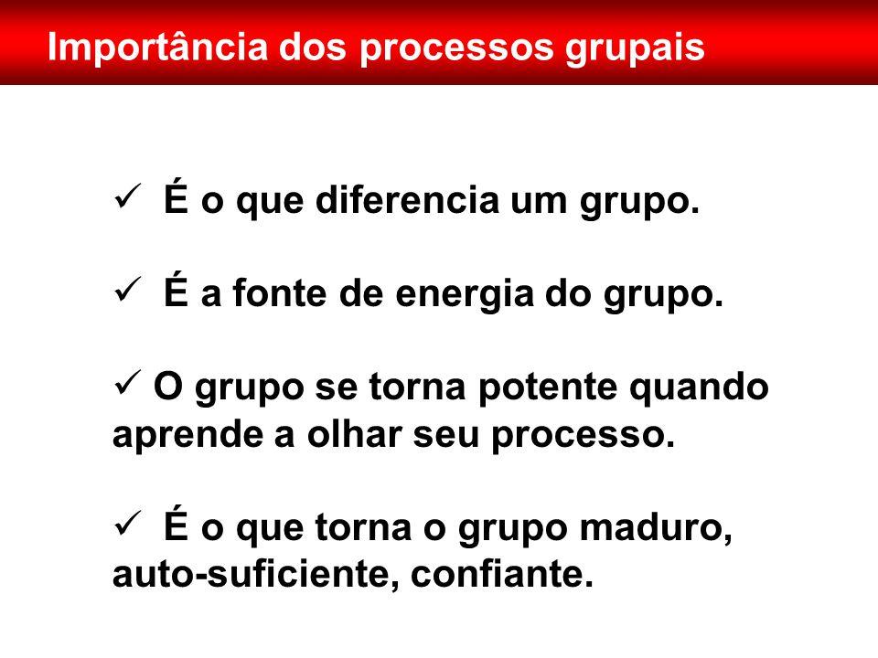Importância dos processos grupais