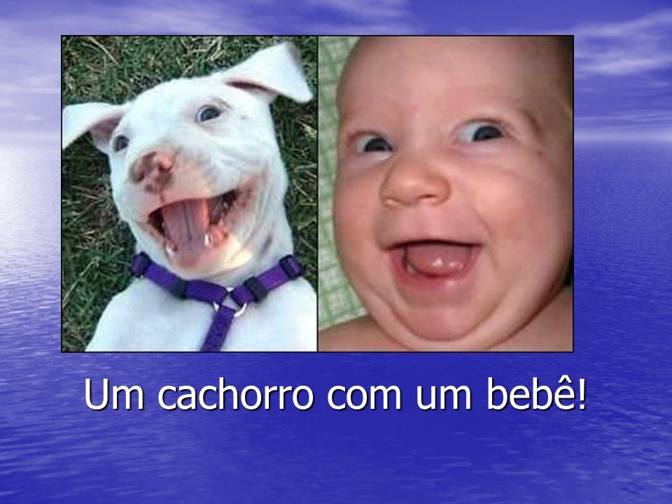 Um cachorro com um bebê!