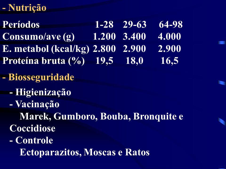 - Nutrição Períodos 1-28 29-63 64-98. Consumo/ave (g) 1.200 3.400 4.000.