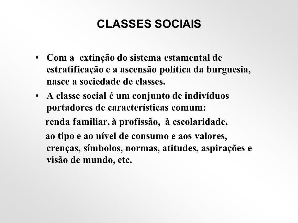 CLASSES SOCIAIS Com a extinção do sistema estamental de estratificação e a ascensão política da burguesia, nasce a sociedade de classes.