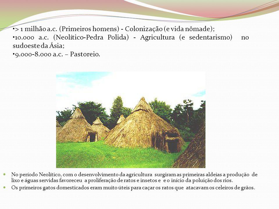 > 1 milhão a.c. (Primeiros homens) - Colonização (e vida nômade);