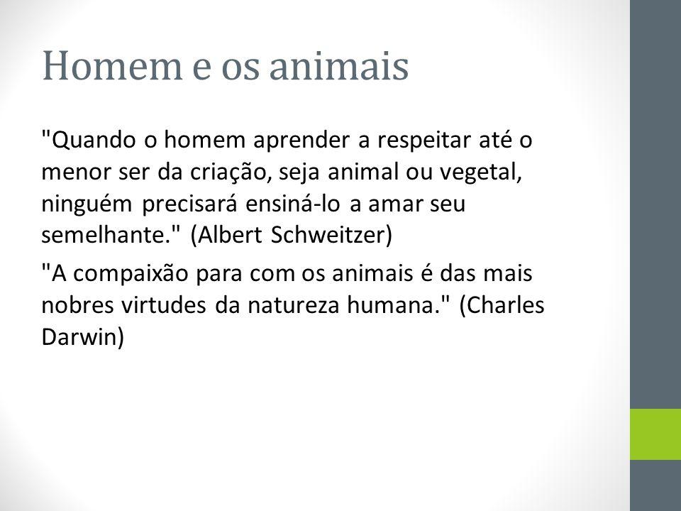 Homem e os animais