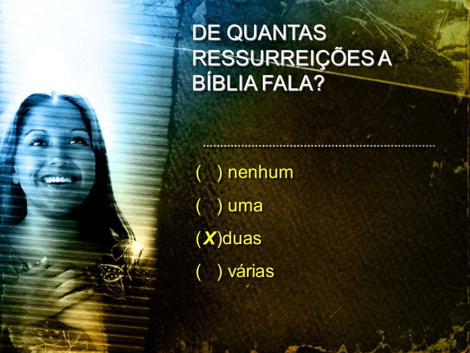 DE QUANTAS RESSURREIÇÕES A BÍBLIA FALA