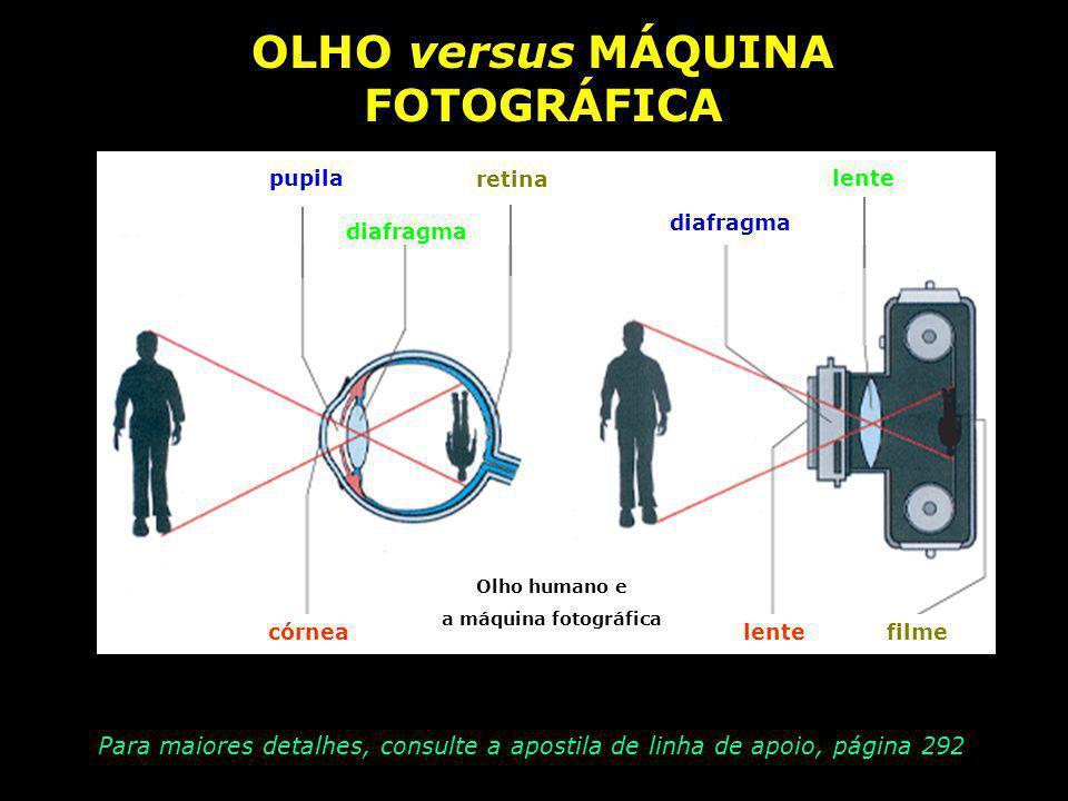 OLHO versus MÁQUINA FOTOGRÁFICA