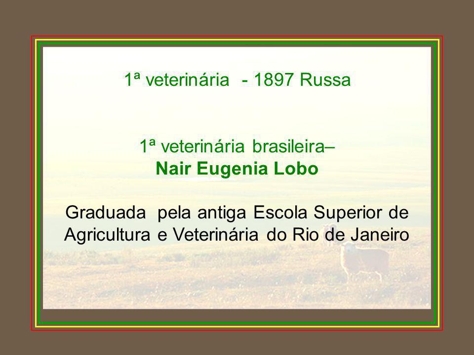1ª veterinária brasileira–