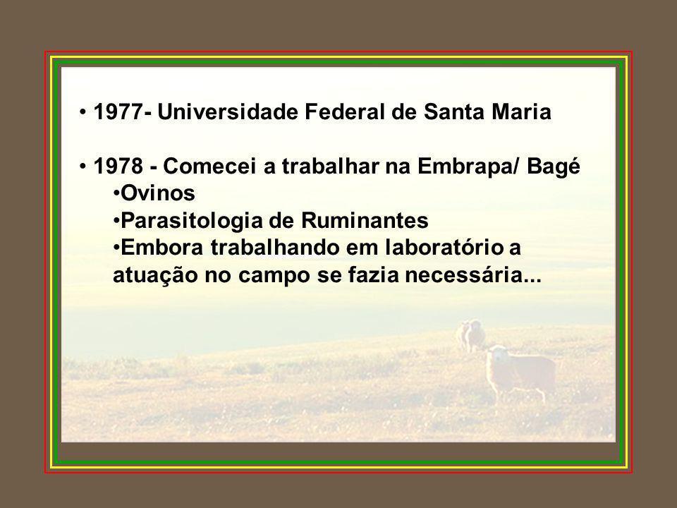 1977- Universidade Federal de Santa Maria