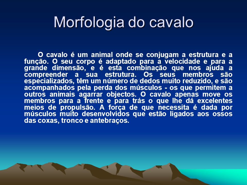 Morfologia do cavalo