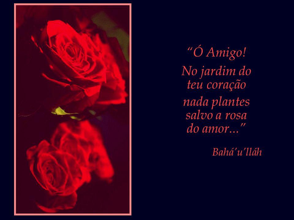 Ó Amigo! No jardim do teu coração nada plantes salvo a rosa