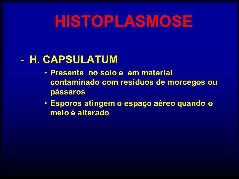 HISTOPLASMOSE H. CAPSULATUM