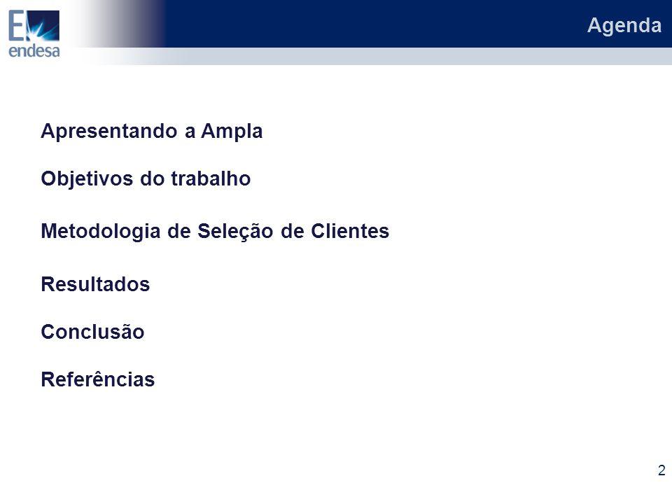 Agenda Apresentando a Ampla. Objetivos do trabalho. Metodologia de Seleção de Clientes. Resultados.