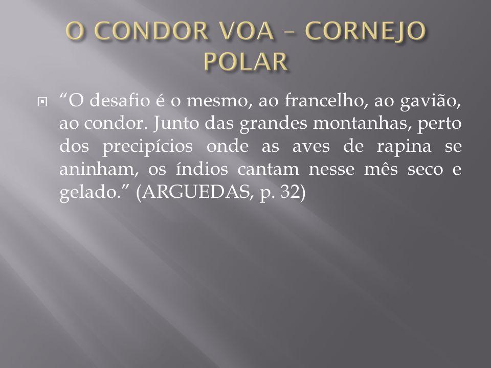 O CONDOR VOA – CORNEJO POLAR