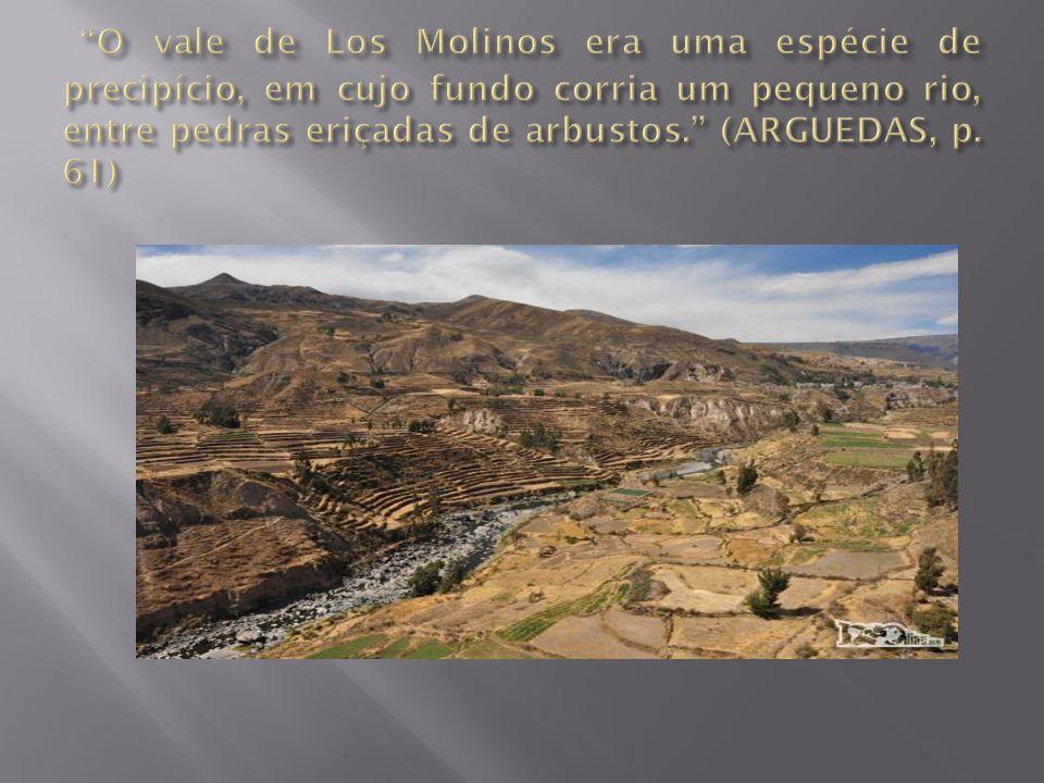 O vale de Los Molinos era uma espécie de precipício, em cujo fundo corria um pequeno rio, entre pedras eriçadas de arbustos. (ARGUEDAS, p.