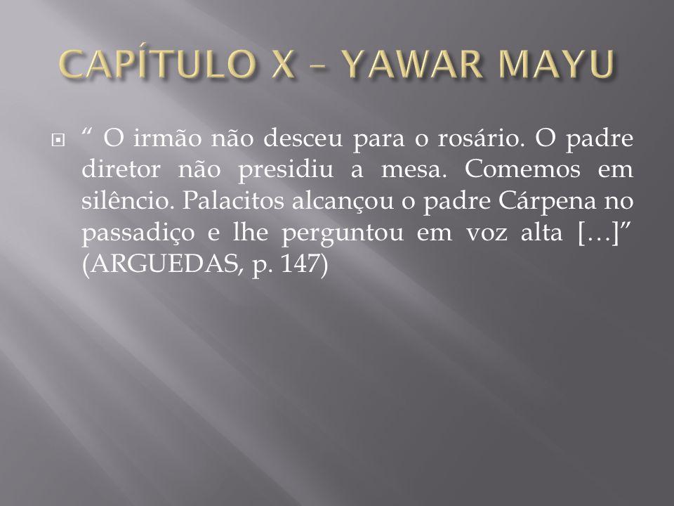 CAPÍTULO X – YAWAR MAYU