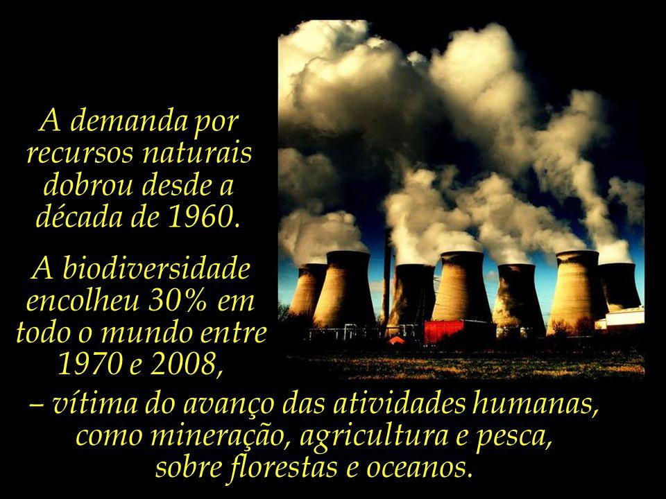 A demanda por recursos naturais dobrou desde a década de 1960.