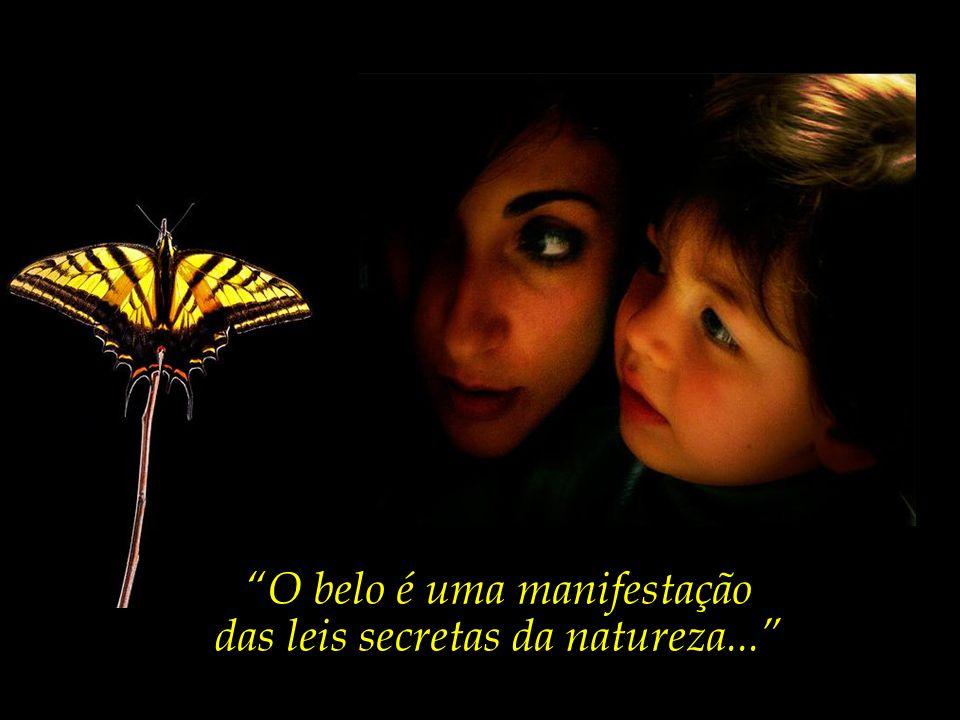 O belo é uma manifestação das leis secretas da natureza...