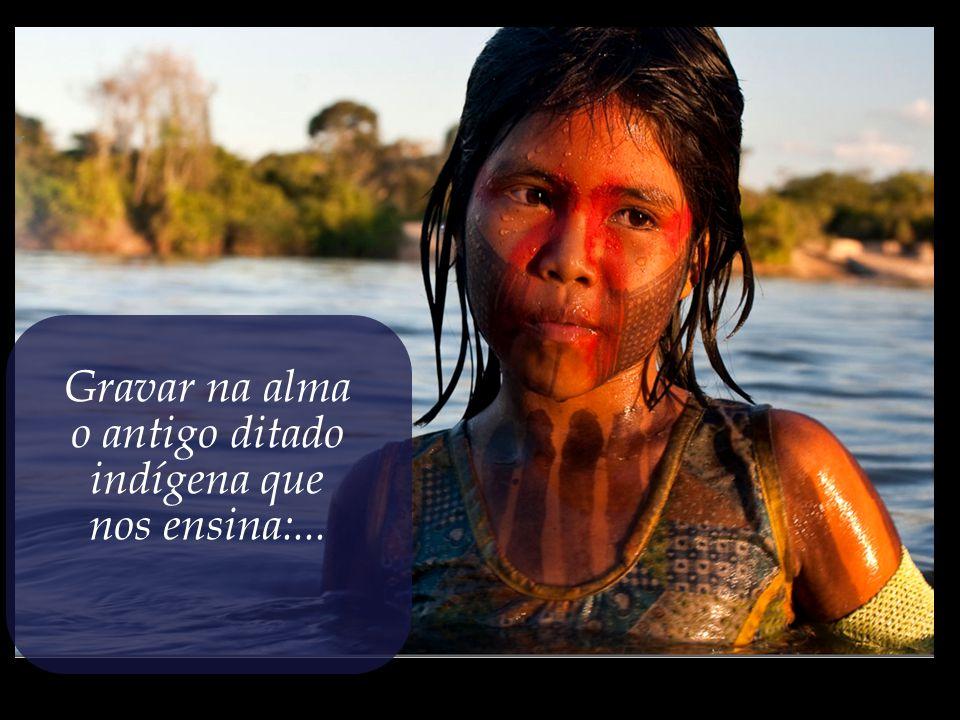 o antigo ditado indígena que