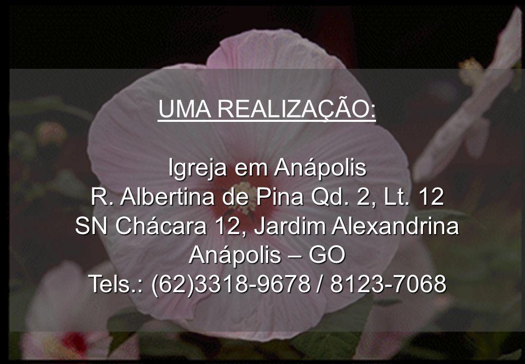 R. Albertina de Pina Qd. 2, Lt. 12 SN Chácara 12, Jardim Alexandrina