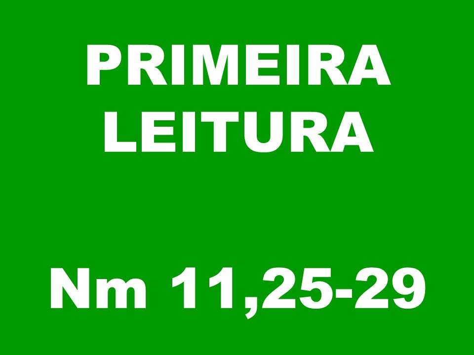 PRIMEIRA LEITURA Nm 11,25-29