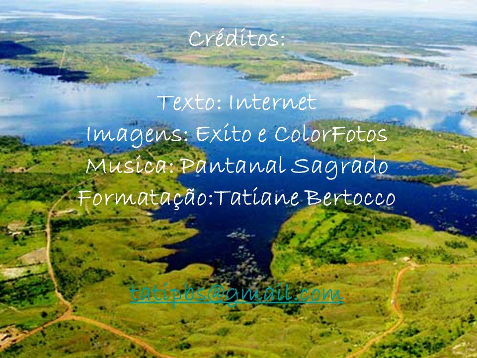 Imagens: Exito e ColorFotos Musica: Pantanal Sagrado