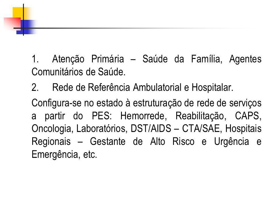 1. Atenção Primária – Saúde da Família, Agentes Comunitários de Saúde.